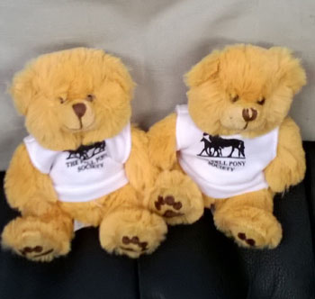 small soft toy teddies