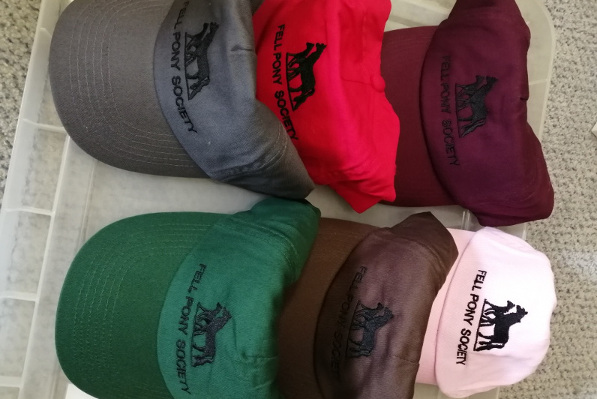 baseball caps in assorted colours with FPS logo