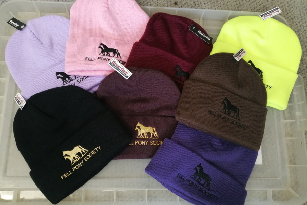 knitted hats, assorted colours, FPS logo